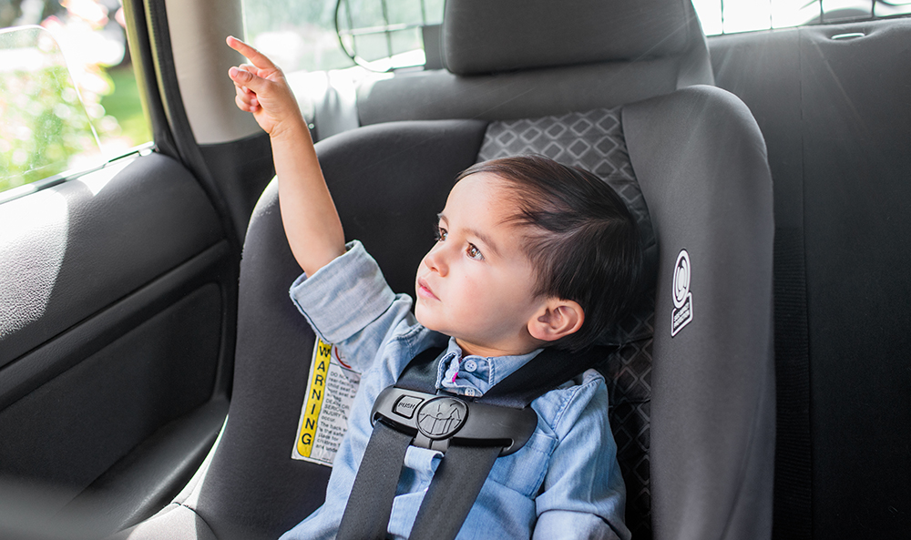 Toddler in a car seat pointing out the car window