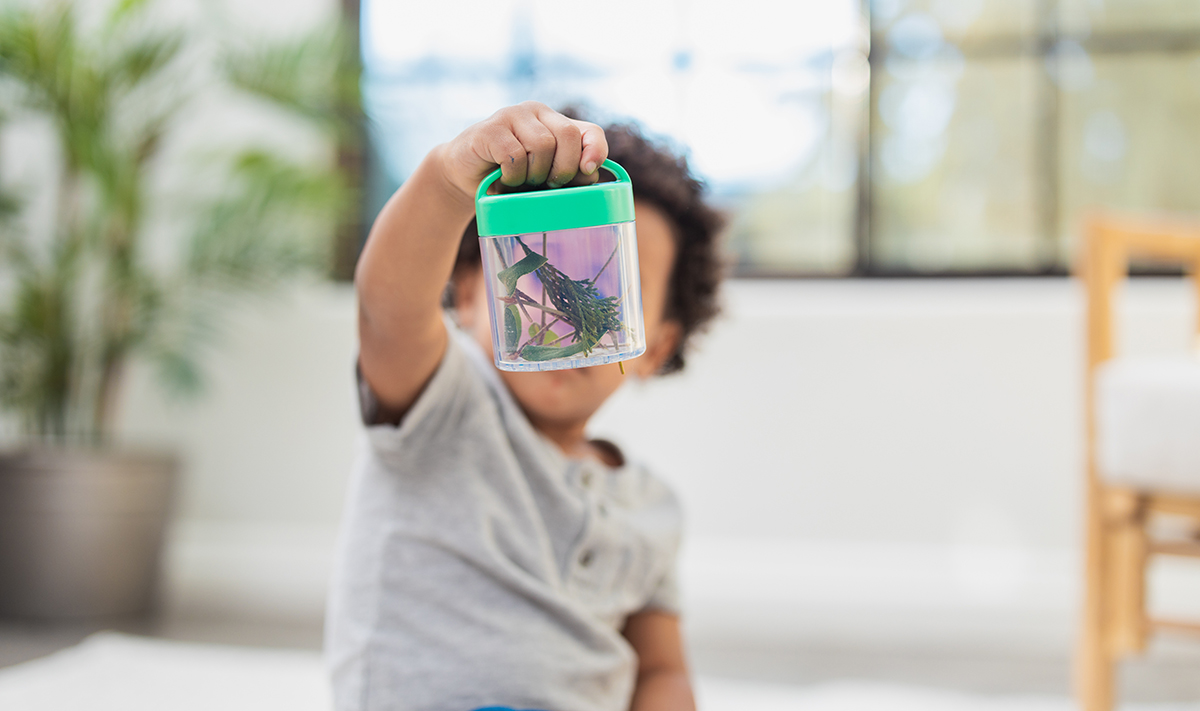 Young child holding up a container that's filled with small plants